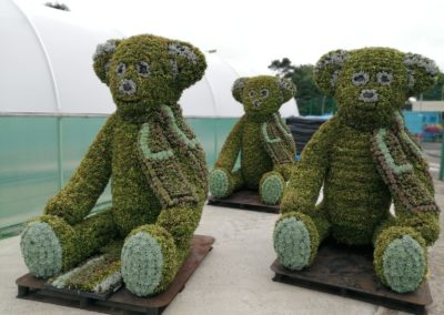 Ballymena 3D Bears